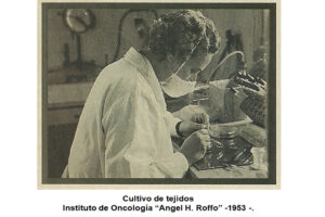 Fotografía de investigación Cultivo de tejidos Instituto Roffo